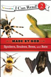 Spiders%2C%20Snakes%2C%20Bees%20and%20Bats